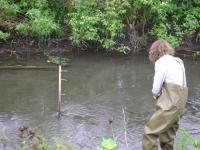 Water testing in a stream